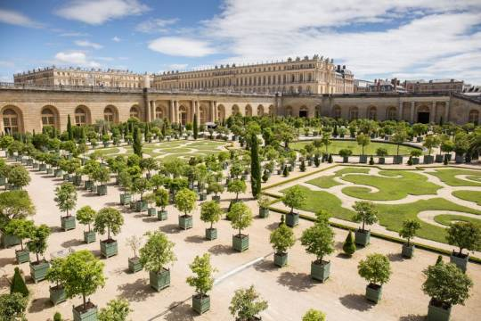 """File:Château de Versailles (Orangerie).jpg"" by Nono vlf is licensed under CC BY-SA 4.0 - Source = https://upload.wikimedia.org/wikipedia/commons/7/74/Ch%C3%A2teau_de_Versailles_%28Orangerie%29.jpg"